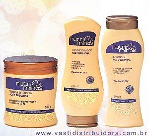 Kit Nutriminas Açai (Shampoo 300g,Condicionador 300ge Mascara 500g).