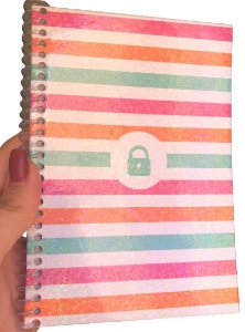 Caderno Login