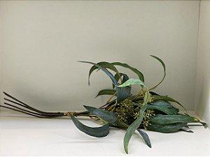 Ramalhete de eucalipto