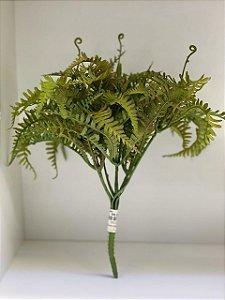 Folha de samambaia verde