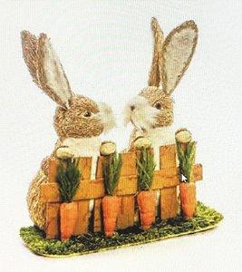 Casal Coelho cerca com cenouras