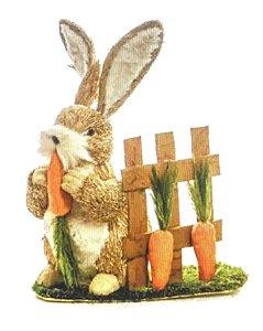 Coelho rústico na cerca com cenoura