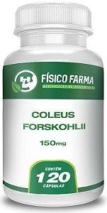 Coleus Forskohlii 150mg - 120 cáps