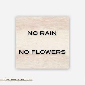 Quadro Pinus M - No Rain. No Flowers