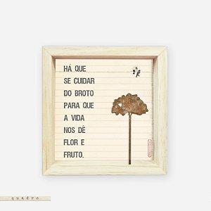 Quadro Caixa Pinus - Há Que Se Cuidar do Broto