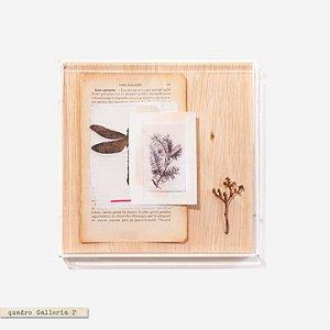 Quadro Galleria - Libélula Livro