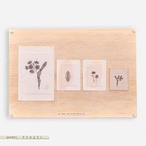 Quadro Simple G - Botânica Muda até brotar flor