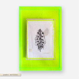 Quadro Caixa Acrilico Verde M - Botânica Ramo