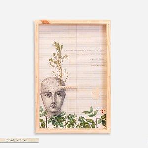 Quadro Box Colagem Botânica Semente
