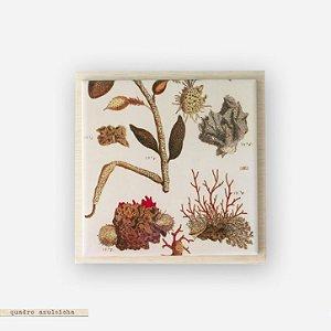 Quadro Azuleicha Botânica - Coral