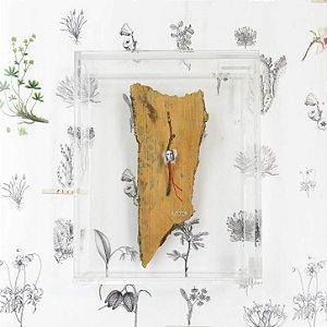 Quadro Acrílico Colagem P - Natureza Cultive