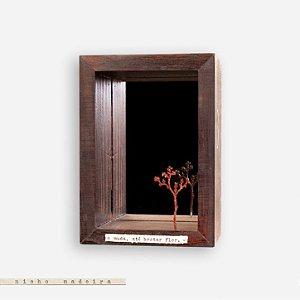 Nicho Espelhado #3 - Árvore - Muda Até Brotar Flor