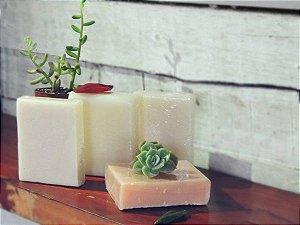 Xampu Solido Natural Vegano em Barra 80g