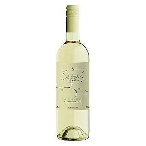 Vinho Branco  Seival By Miolo Sauvignon Blanc