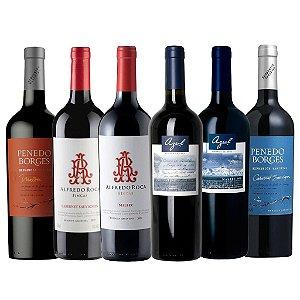 DUPLICADO - Kit Vinhos Tintos da Serra e Campanha Gaucha