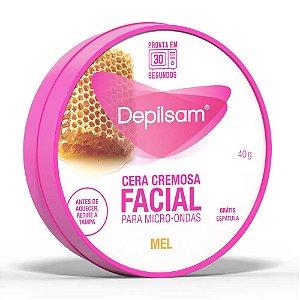 Cera Depilatória Cremosa Facial Depilsam Mel 40g