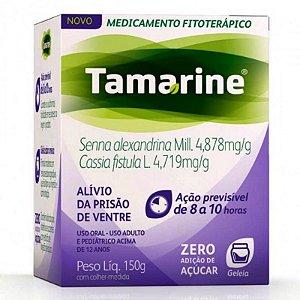 Tamarine Geléia sem Adição de Açúcar 150g