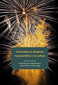 """<span class=""""bn"""">Dimensões do despertar <br>na psicanálise e na cultura</span><span class=""""as"""">Denise Maurano, Heloneida Neri & Marco Antonio Coutinho Jorge [org.]</span>"""