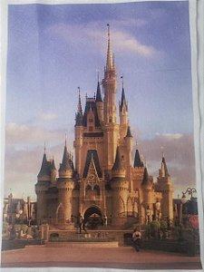 Fundo castelo G 40x28cm
