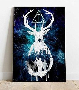 Placa Decorativa -  Patrono Harry Potter