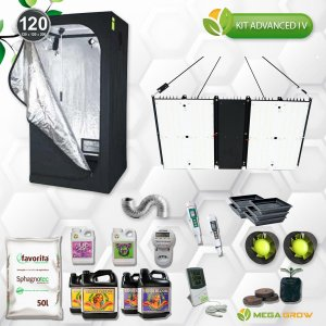 KIT Advanced IV - Quantum Boad Max UV+UR 240W
