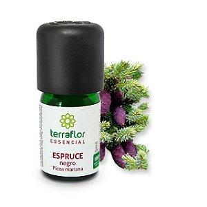 Óleo Essencial Espruce Negro 5ml - Terraflor