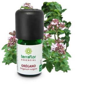 Óleo Essencial de Orégano 5ml - Terraflor