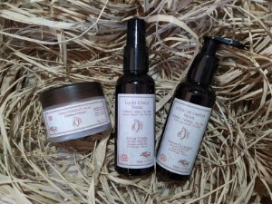 Kit Rosto Certificado EcoCert (Limpeza, Tonificação e Hidratação) Arte dos Aromas
