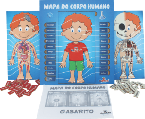 Mapa do Corpo Humano - Madeira