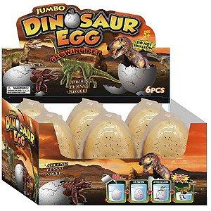 Fóssil Egg Sortido