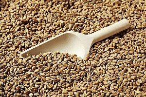 Malte Especial Wheat Light Importado GoldSwaen