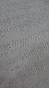 Papel de Parede Letra Musicais 10 Metros