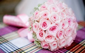 Buquê de Noiva com 40 Mini Rosas Cor de Rosa