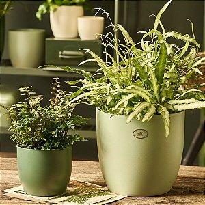 Vaso Importado Verde Bandeira-Tamanho Orquídea Pote 15