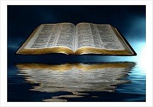 BIBLIA SAGRADA 017 A4
