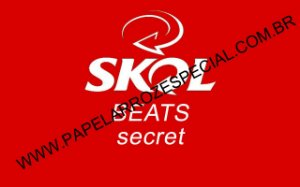SKOL BEATS SECRET A4