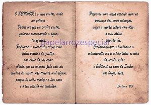 BIBLIA  SAGRADA 015 A4
