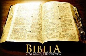 BIBLIA 003 A4
