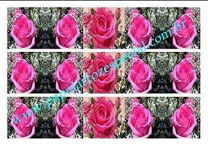 ROSA FAIXA LATERAL 001 A4 03 UNIDADES