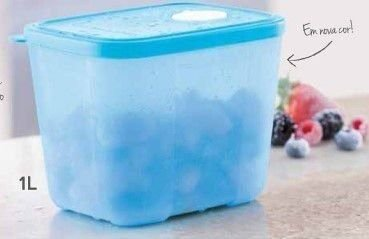 Tupperware Freezer Time 1,0 Litro - Azul