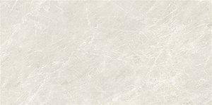 Porcelanato Quartzo Biscuit AR 12024 61x121 cm