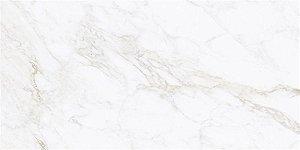 Porcelanato Renoir PR 12098 61X120 cm