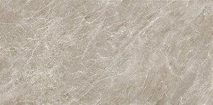 Porcelanato Quartzo Taupe PR12025 61X121 cm