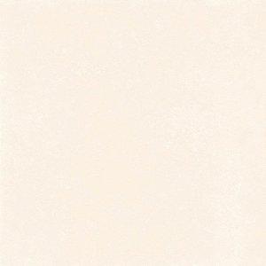 Porcelanato bege brilho 61023 61x61 cm