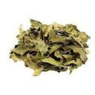 Chá de Espinheira Santa (100g)