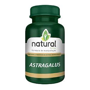 Astragalus 500MG em Cápsulas