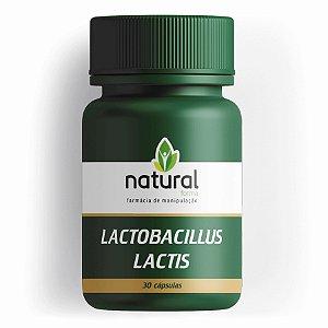 Lactobacillus Lactis 30 Cápsulas