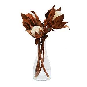Protea Individual Terracota G