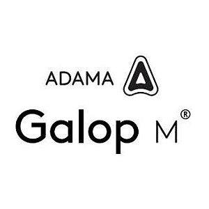 Galop M