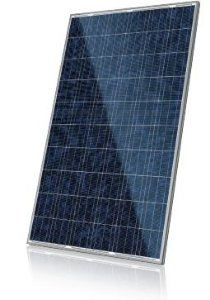 Painel Solar Fotovoltaico Policristalino de 250W Canadian Solar
